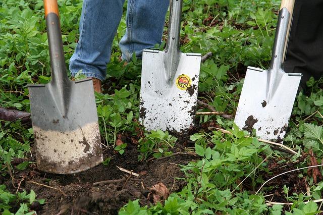 Tending Soil