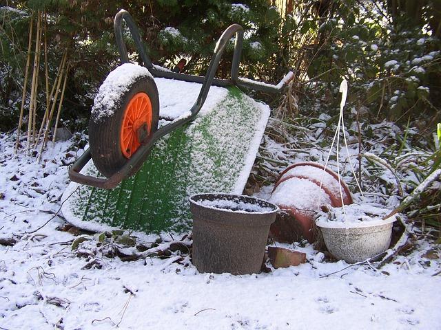 Frozen Soil